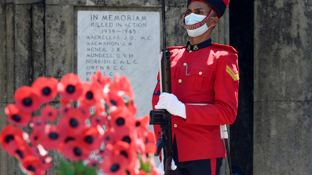 Why does the British royal family use the red poppy plant as their emblem?