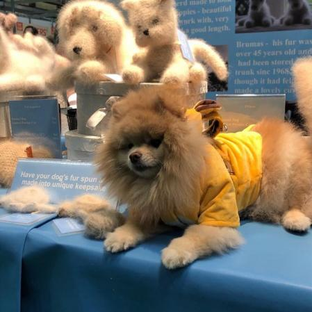 Stuffed animals made of dog hair sold by Andrea Devine